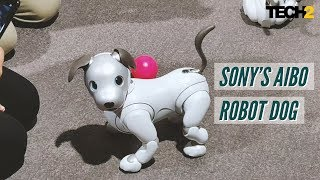 Sony's Aibo robot dog is just too cute | IFA 2018