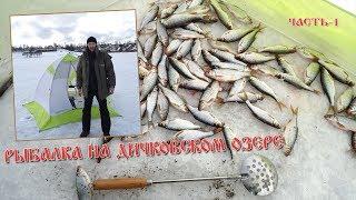 Рыбалка на вашутинском озере в ярославской области