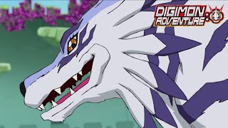 Greymon And Garurumon Combo | Digimon Adventure: