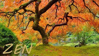 Zen Garden Relaxing Music and Nature - Asian Far East Instruments