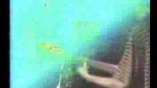 Cherry Poppin' Daddies 9/30/93: Dirty Mutha Fuzz (12 of 22)