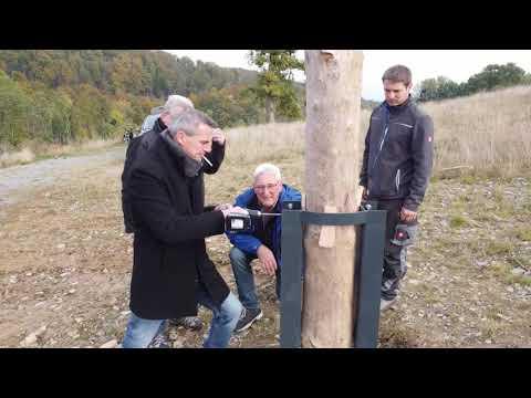 Video: Storchennest Chronik