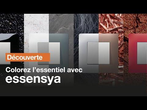Essensya prise de courant de courant double 2P+T