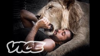 猛獣をペットにするクウェートのセレブたち