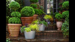 Plant This Spring Container Garden Trio From @Southern Living & @Linda Vater
