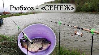 Отчет по рыбалке с рыбхоза сенеж