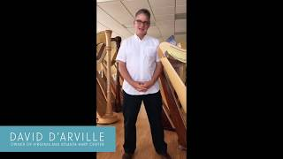 How to Buy a Used Pedal Harp
