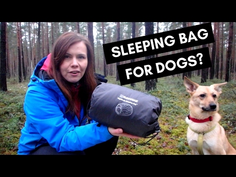SLEEPING BAG FOR DOGS? // Ruffwear Highlands Sleeping Bag Review