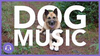 Dog Music: INSTANT Dog Relaxation Playlist (TESTED)