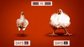 10 Facts That Could Turn You Vegetarian