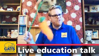 Education for kids | How to look after your cat 🐱