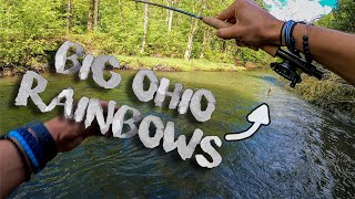 Nymph Fishing for Rainbow Trout in Ohio!!