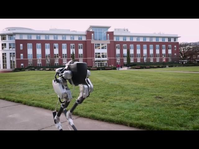 Шагающий двуногий робот Cassie готов квыходу на рынок