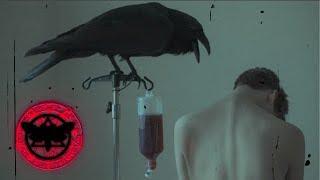 ✚ In3briant - Black Raven