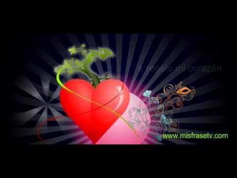 Te Regalo Mi Corazon Postales Animadas Para El Dia De San Valentin