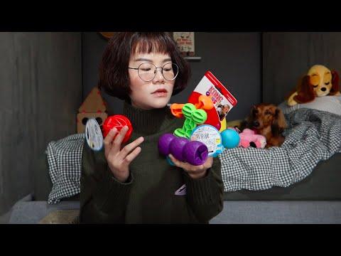 香菇老師分享家中的所有狗玩具