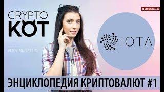 Что такое криптовалюта IOTA? ИОТА без блокчейна и майнеров. Крипто KOT. Cryptodealers cryptocurrency
