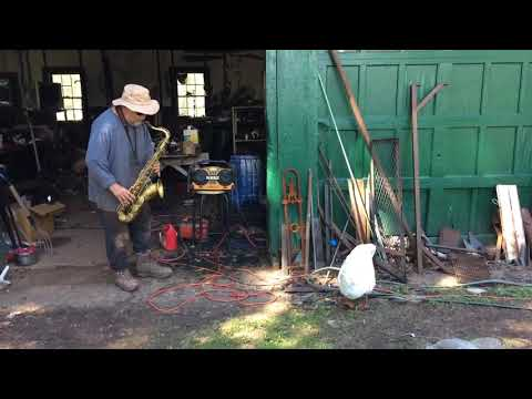Goose Jamming out to Farmer's Jazzy Sax