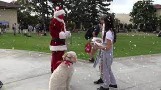 Head of School Ron Kim is Santa Claus!