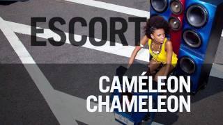 "Escort   ""Caméleon Chameleon"""