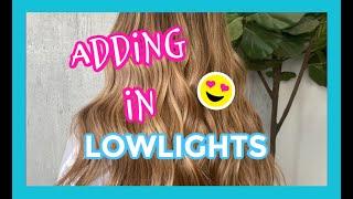 ADDING LOWLIGHTS INTO BRONDE HAIR (CREATING DEPTH)