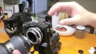 K&F Concept Nikon G Mount Lens to Sony E Mount Lens Adapter Unboxing and Quick Review (4K HD)