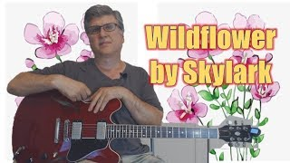 Wildflower By Skylark (Guitar Lesson With TAB)