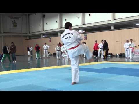 Taekwondo Cto. Navarro Poomsae (3)