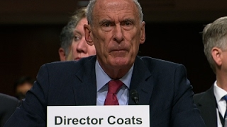 Coats Not Commenting on Trump Collusion Report