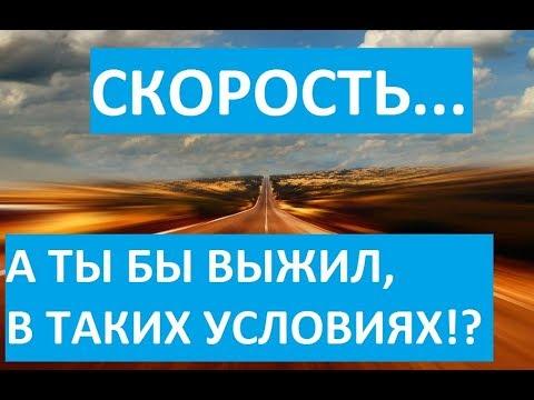 """Юмористический фильм про куриц """"Скорость"""""""