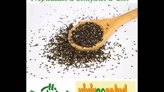 Semillas de Chia: Propiedades & Beneficios & Usos