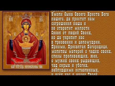 """Самая сильная молитва от пьянства перед иконой """"Неупиваемая чаша"""""""