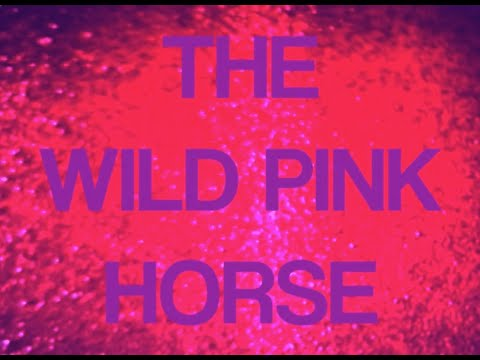 preview image for The Wild Pink Horse