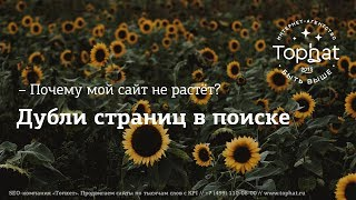 Дубли страниц в поиске Яндекс и Google