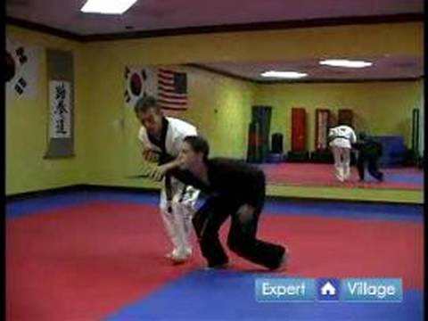 Hapkido Techniques : Hapkido Defense Against a Straight Punch