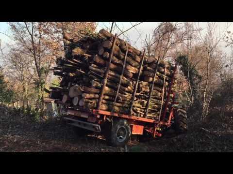 Trasporto in bosco legna rimorchio Trotti