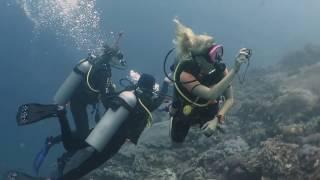 Dive with Joe's in North Penida