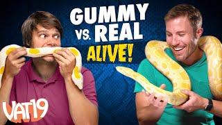 Gummy vs Real Challenge: LIVE ANIMAL edition! - dooclip.me