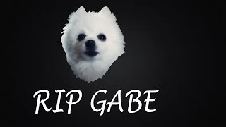 THE RIP GABE SONG