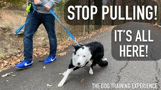 How To STOP LEASH Pulling From Begin to End!