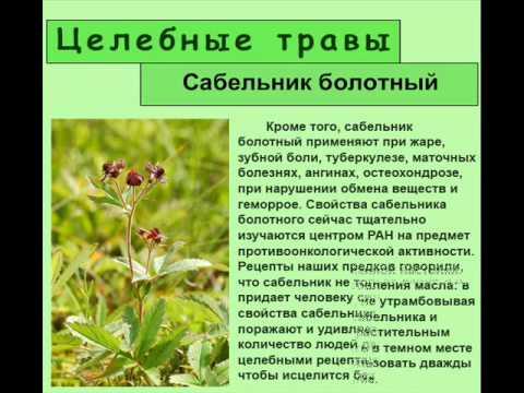 Borissowa ist gegeben ist das Foto abgemagert