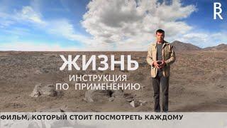 Жизнь: Инструкция по применению | Владимир Герасичев