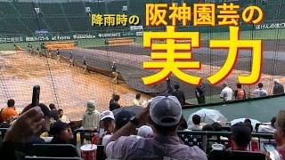 阪神園芸の実力最強の雨天対策HowtosetupgroundsheetsatKOSHIENbaseballstadiuminJAPAN