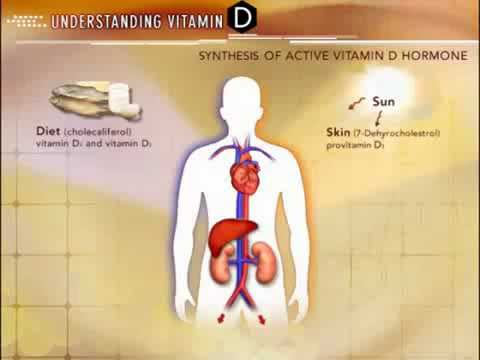"Video Vitamin D3 ""So simple, so effective"" Vit D Health Benefits"