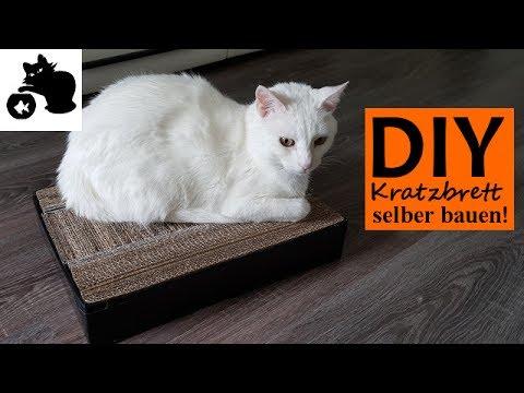 🔥Katzen Kratzbrett selber bauen - DIY Katzenspielzeug selber machen - DIY Kratzbrett aus Kartons