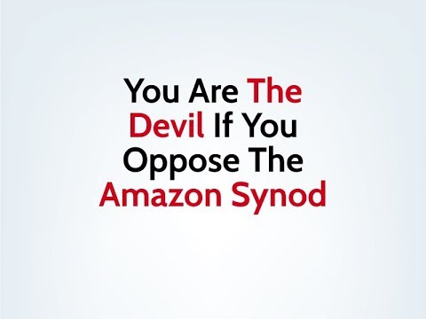 You Are The Devil If You Oppose The Amazon Synod