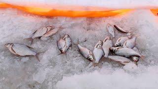Рыбалка на мариинском водохранилище свердловской области