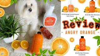 ANGRY ORANGE Pet Odor Eliminator, Urine Remover And Deodorizer, NON TOXIC I Lorentix