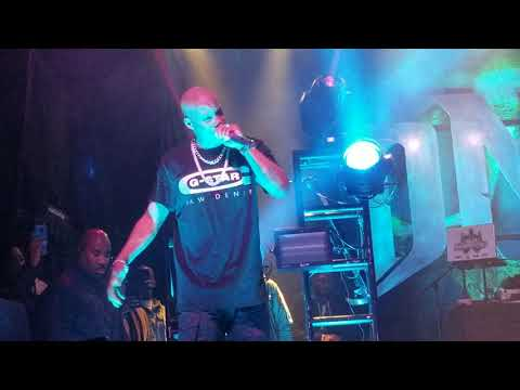 """DMX """"It's All Good"""" LIVE @ 20th Anniversary Show in NYC"""