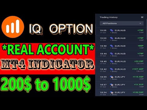 Binary options jobs